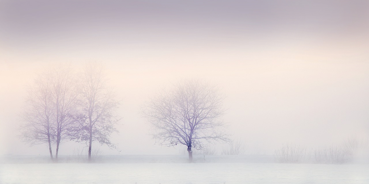 winter-landscape-2571788_1280-2
